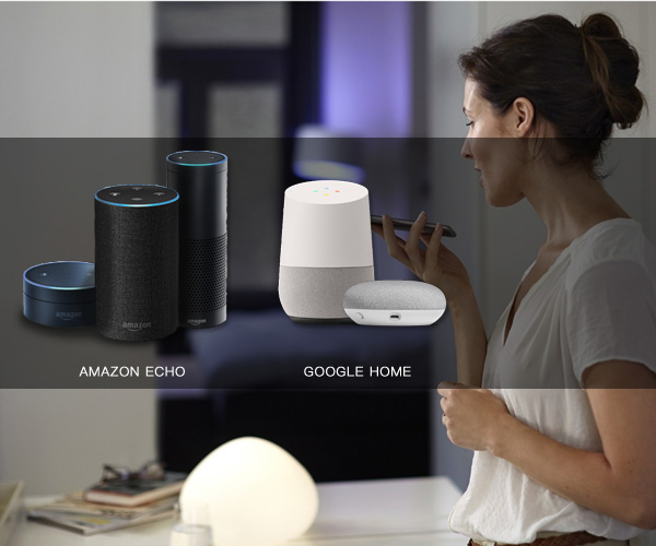 Smart Home integrate with Voice Control